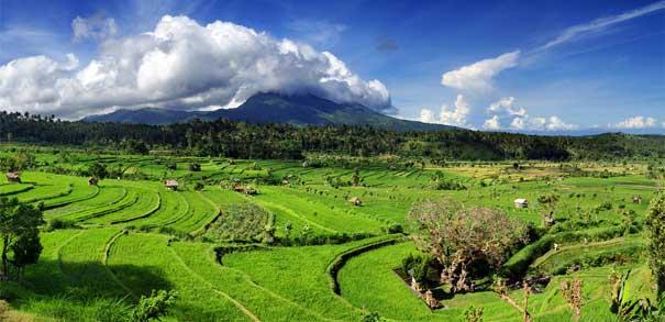 Отдых на Бали, остров Бали, цены Бали