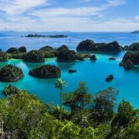Экскурсия-путешествие с Бали на остров Комодо