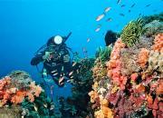 Дайвинг на Бали: где лучше заниматься дайвингом, выбор пляжей
